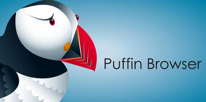 Puffin Browser Pro Apk 7.8.9.4111 Download [2019 April Update]
